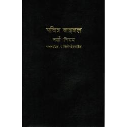 Nepalees, Nieuw Testament, TBS, Groot formaat, Paperback