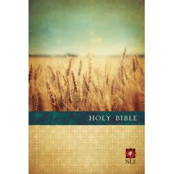 Engels, Bijbel, NLT, Groot formaat, Paperback, Aren