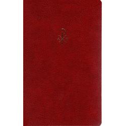 Nederlands, Bijbel, NBG '51, Senior formaat, Luxe uitgave, Blauw