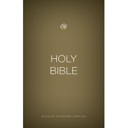 Engels, Bijbel, ESV, Groot formaat, Paperback, Goud