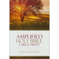 Engels, Amplified Bible, Groot formaat, Harde kaft