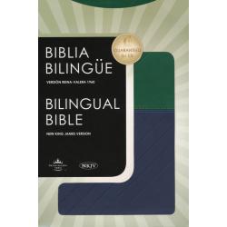 Spaans-Engelse  Parallelbijbel, RV 60, Groot formaat, Luxe uitgave