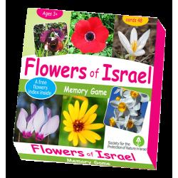 Engels, Spellen, Flowers of Israel Memory Game