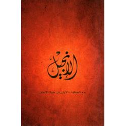 Arabisch, Nieuw Testament, New Believers Bible