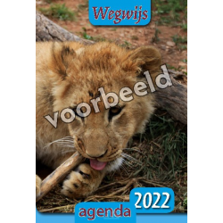 Nederlands, Agenda, Wegwijs, 2022