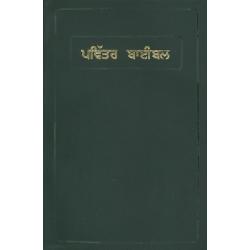 Punjabi, Bijbel (OV), Groot formaat, Soepele kaft