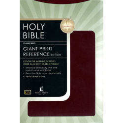 Engels, Bijbel, KJV, Extra groot formaat, Stevige kaft