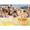 Somalisch, Kalender, Bilaha, 2022