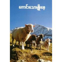 Birmaans, Dagboek