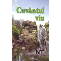 Nieuwe Testament, Roemeens